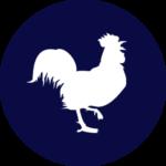 птицеводство оборудование для птицеводства